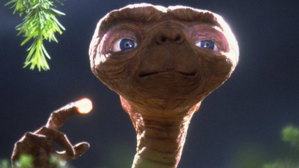 Dumb things in E.T. everyone ignored