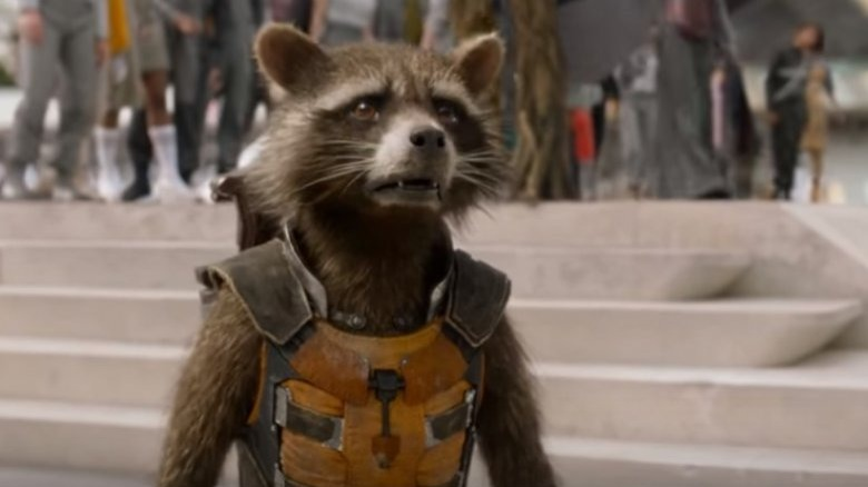 Rocket from Guardians off the Galaxy