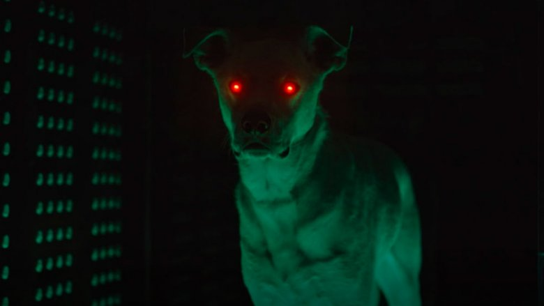 Krypto from the post-credits scene